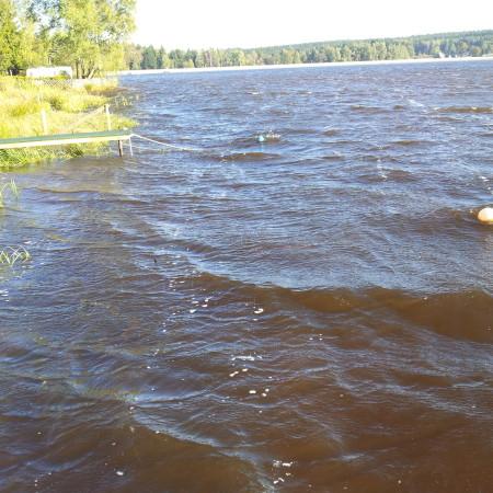 Am Geyrischen Teich im Herbst